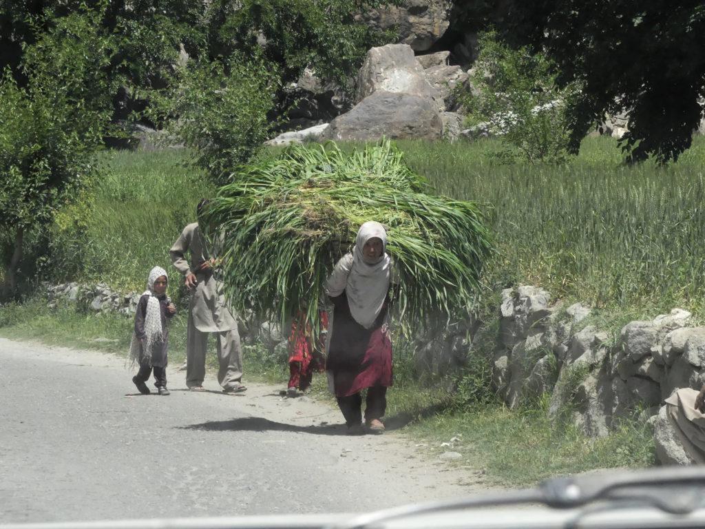 silk-road-12-image033