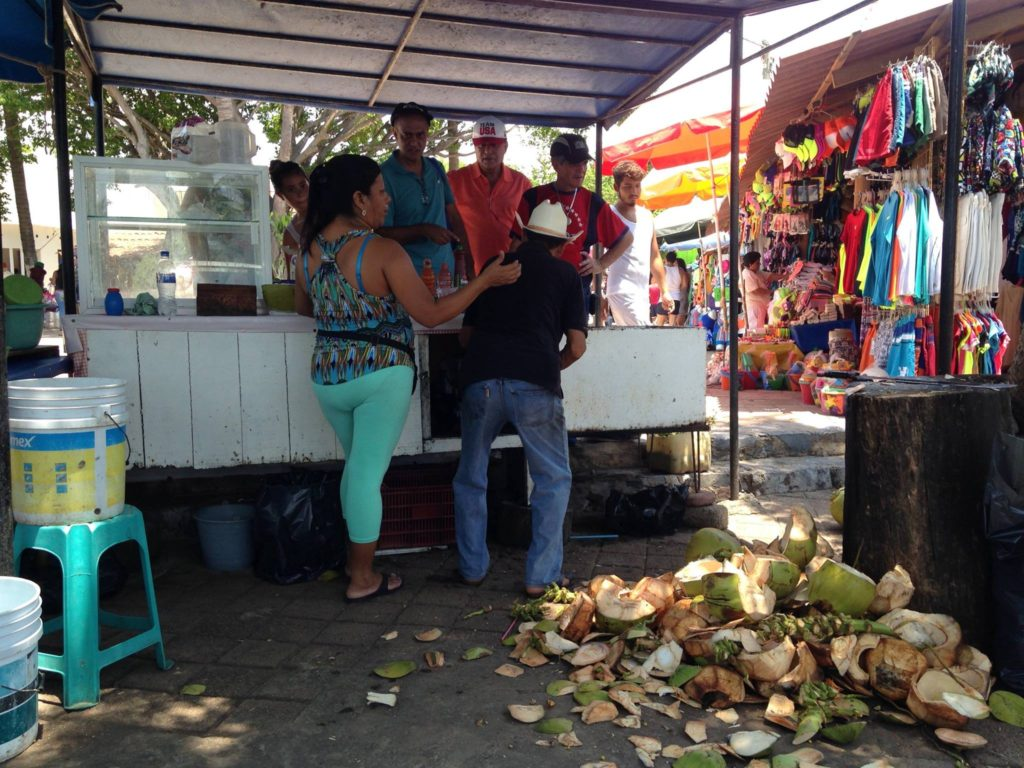 coconuts-negotiations-at-playa-linda-on-the-way-to-isla-ixtapa