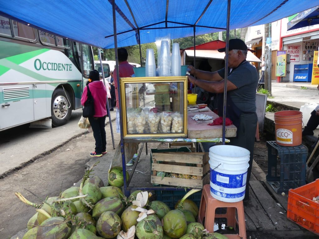 never-miss-the-roadside-coconut-stand