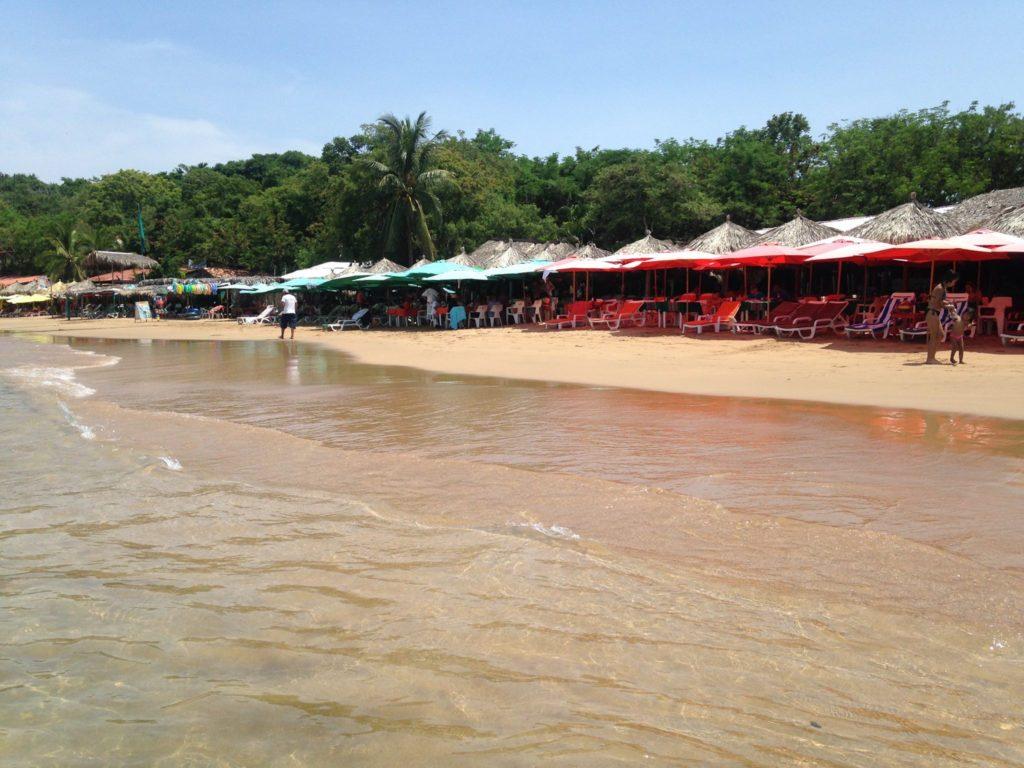 playa-cuachalalate
