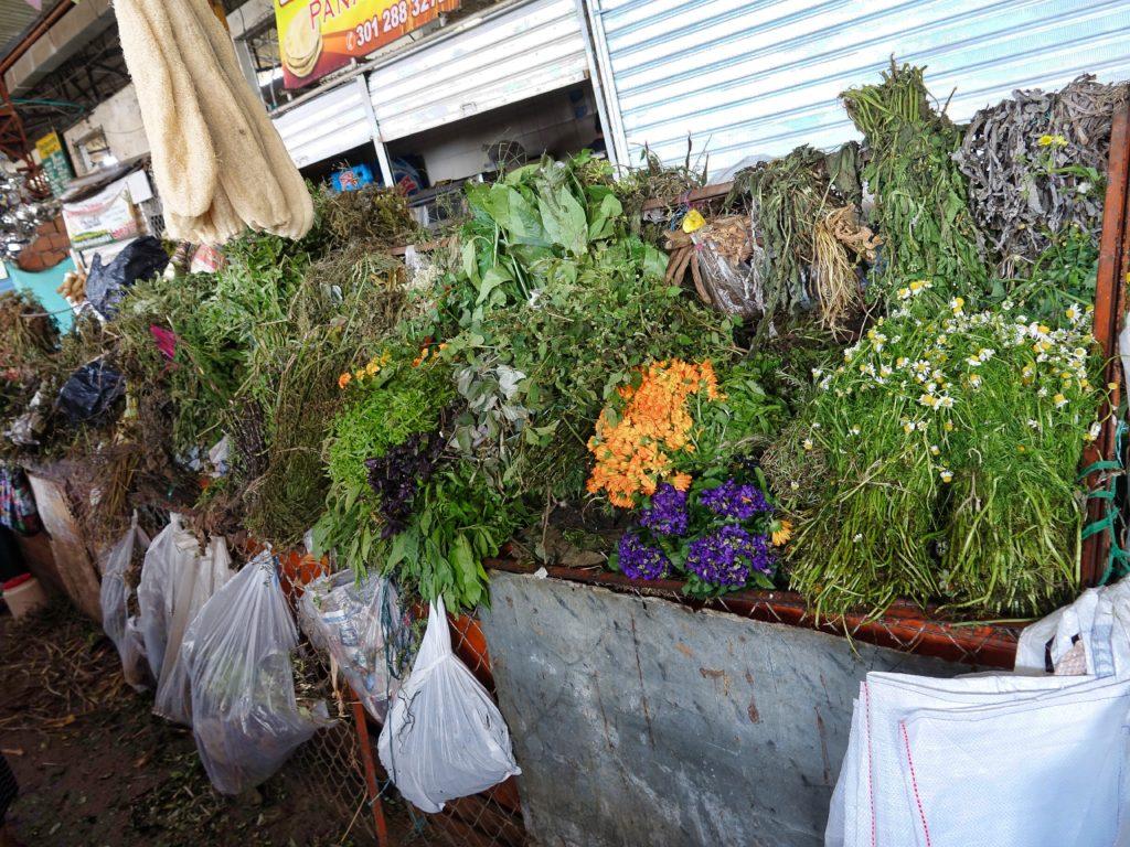 Local medicinal herbs